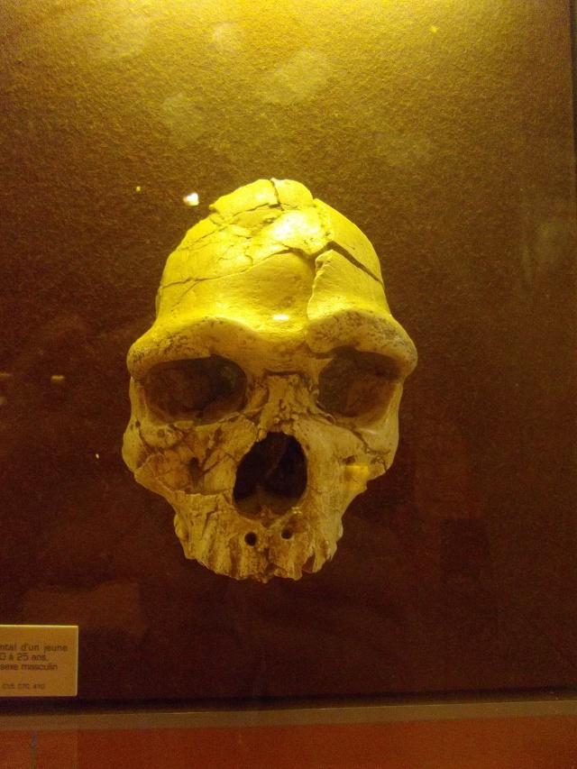 Retour des fètes  de la préhistoire a Tautavel .. Imgp1716