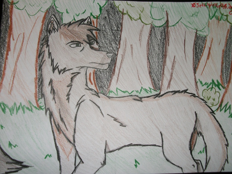 Count Volger Wolf Style- Furtive Glances Drawin13