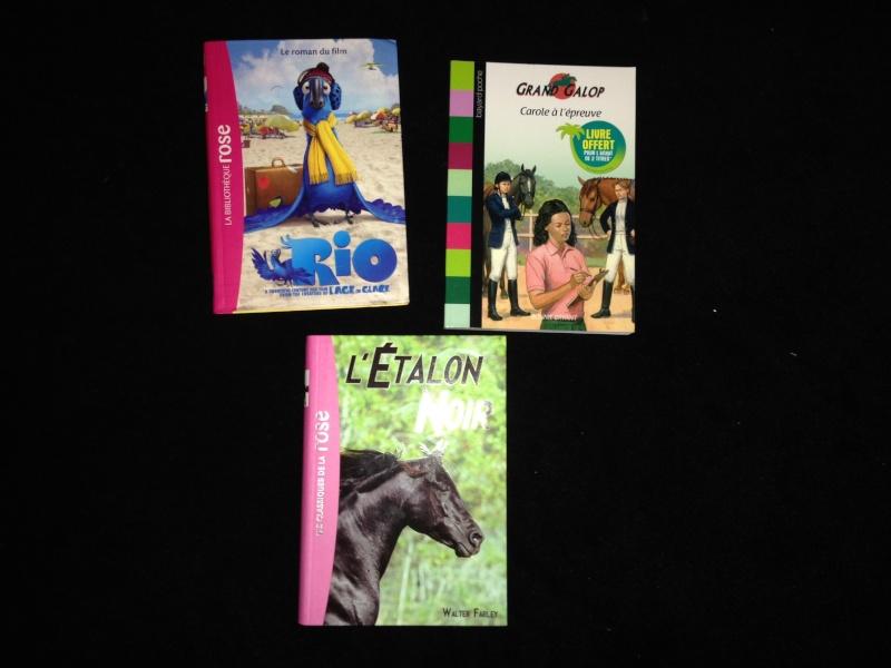 Livres enfant + DVD MAJ au 02/07/14 Autres10