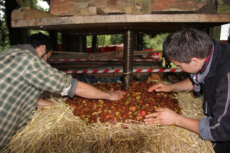 Fête de la Pomme, du Miel et des Champignons 2014 Pmc_st12