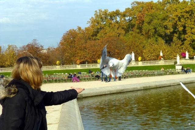 Choses vues dans le jardin du Luxembourg, à Paris - Page 2 Lux_0012