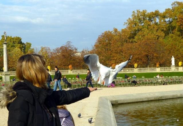 Choses vues dans le jardin du Luxembourg, à Paris - Page 2 Lux_0014