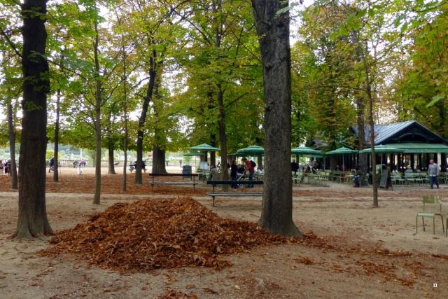 Choses vues dans le jardin du Luxembourg, à Paris - Page 2 Octobr10