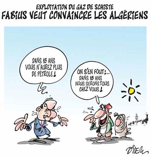 Algérie - Page 11 Gaz-de11