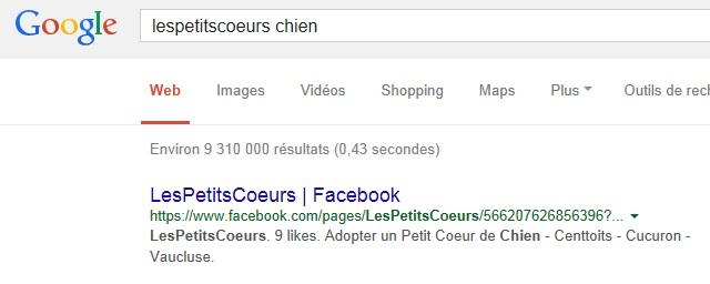 référencement google + recherche = OK Temp15