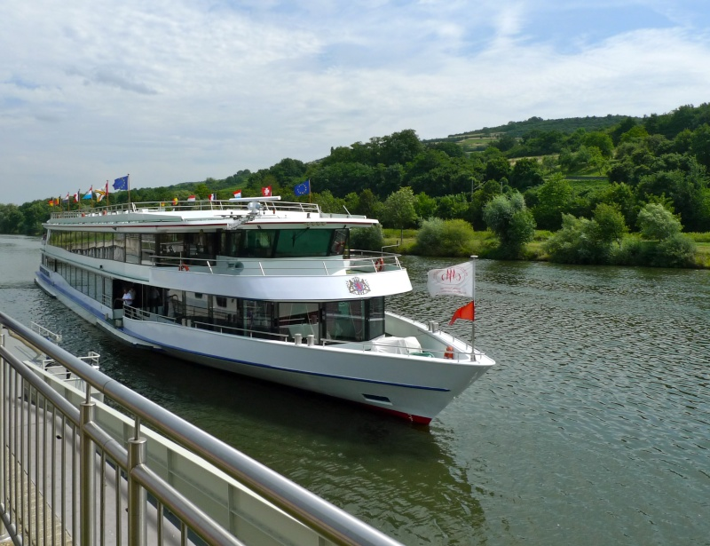 Excursion en moselle luxembourgeoise (21.07.2014) P1040611
