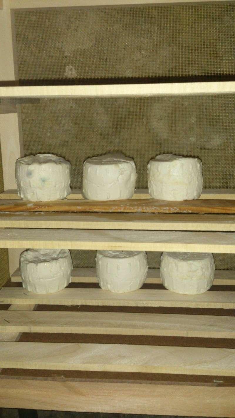 Faire du Fromage de Bibi - Page 4 Dsc_0812