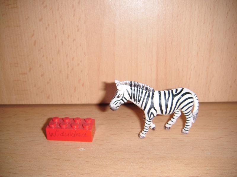 The Eikoh Miniaturplanet animals in my zoo Dscf0431