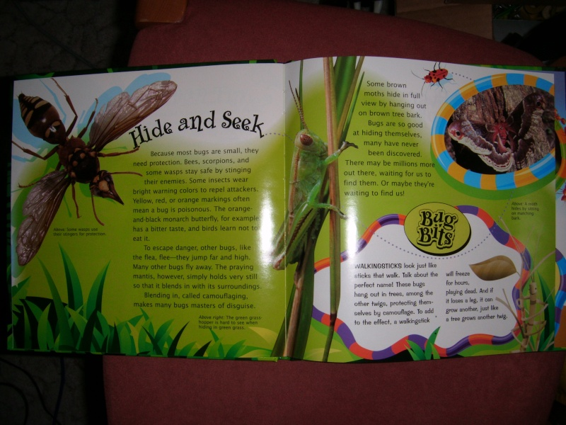 The Innovative Kids Groovy tube book animals in my zoo Dscf0460