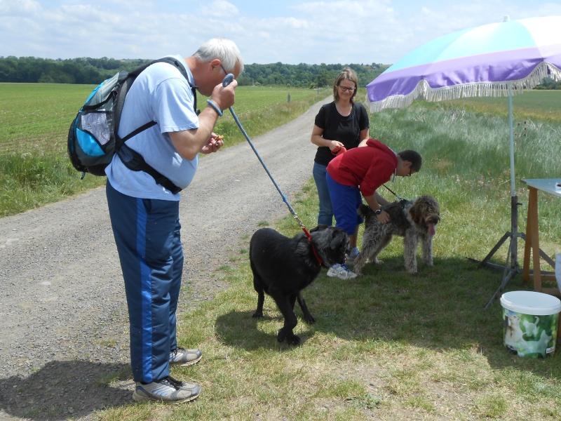 Rando chiens le 1 er juin départ du refuge Rando_12