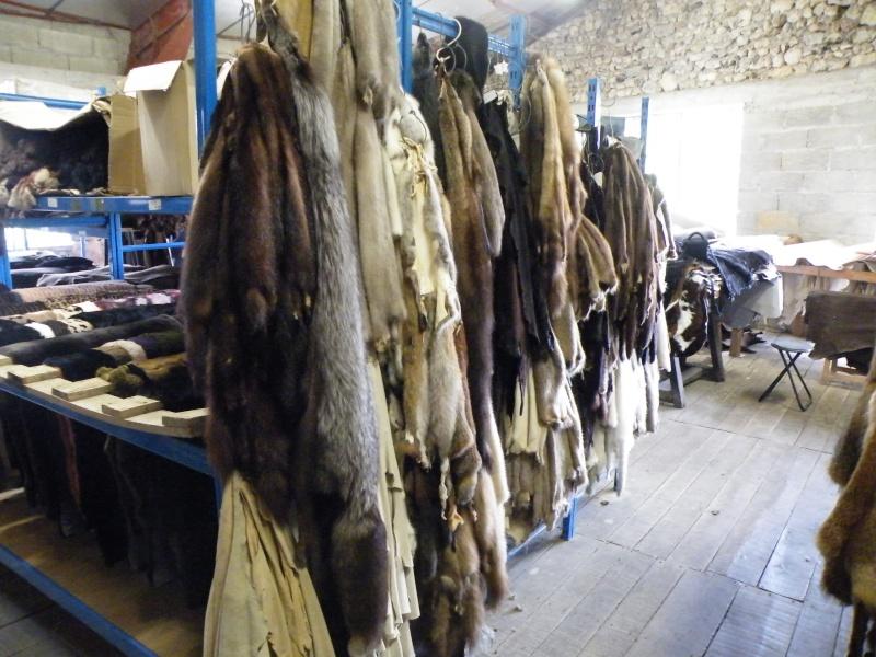 fourrures et cuirs Dscf1813