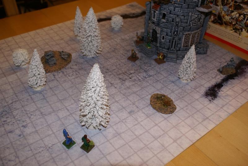 [Chroniques ] Journal d'un elfe de la Lothlorien Dsc06711