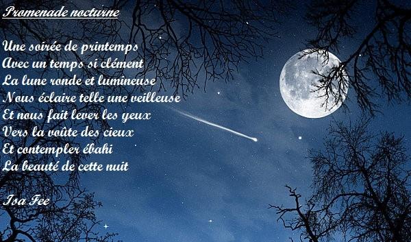 Mes modeste poèmes Promen10