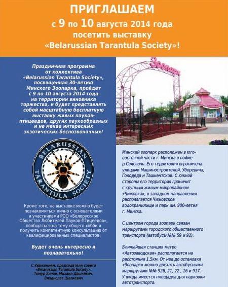 Выставка Belarussian Tarantula Society (!!!) Ddudnd10