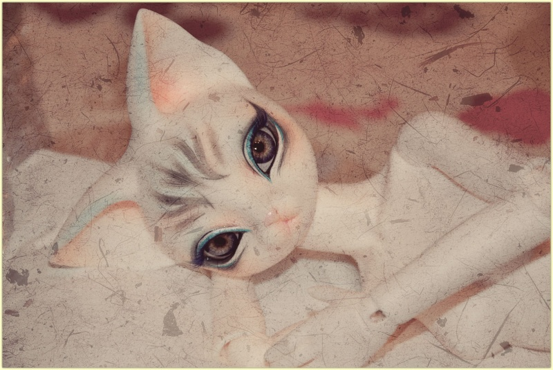 ♥ ♥ ♥ Présentation de ma Littlefée Bisou ♥ ♥ ♥ Page 15 ♥ - Page 9 Fyline10