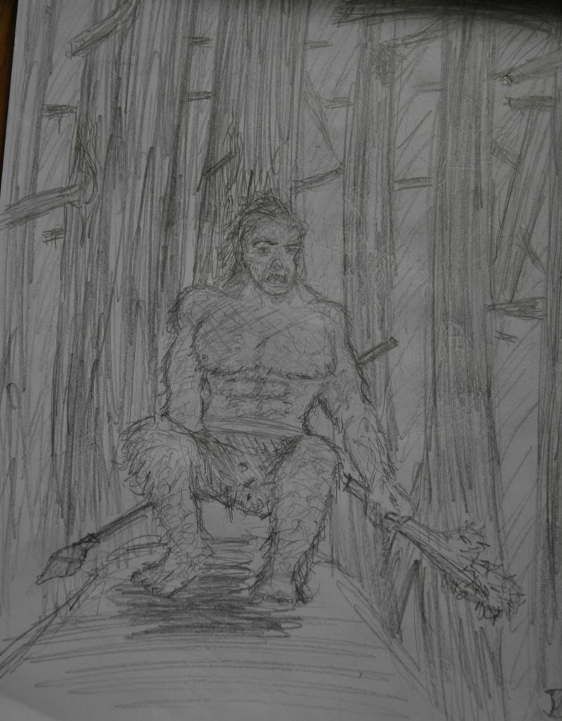 Mes dessins - Page 2 Dsc_9613
