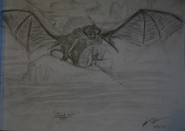 Mes dessins - Page 3 Zirak-10
