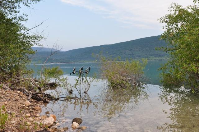 Grand lac: en immersion dans le canard wc du sud est Dsc_2610