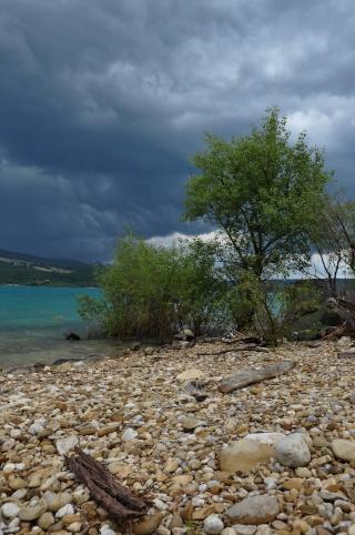 Grand lac: en immersion dans le canard wc du sud est Dsc_2711