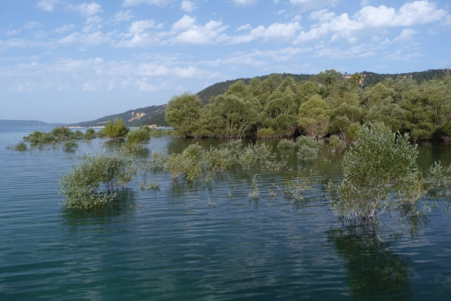 Grand lac: en immersion dans le canard wc du sud est P1120612