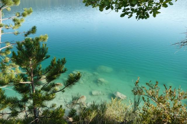 Grand lac: en immersion dans le canard wc du sud est P1120710