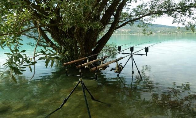 Grand lac: en immersion dans le canard wc du sud est P1120711