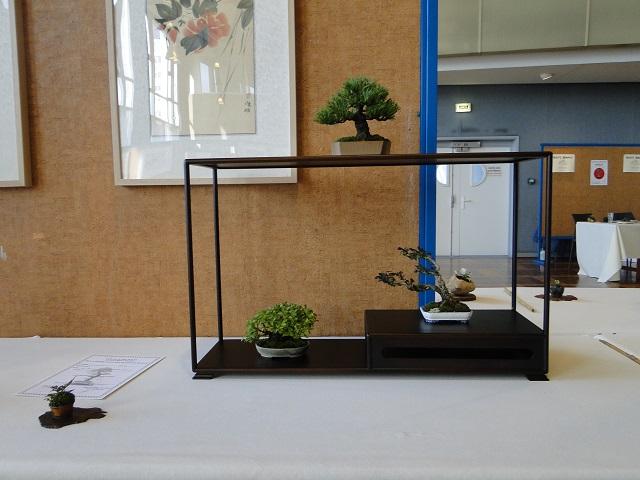 expo vannes Dsc06218