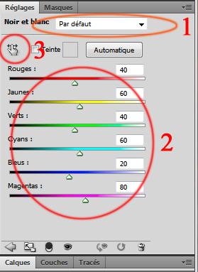 Transformer une photo couleur en un noir et blanc personnalisé Raglag10