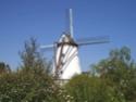 balade de la lys - Balade de la Lys : d'Armentières à Courtrai [18 octobre 2014]  •Bƒ Wervic10