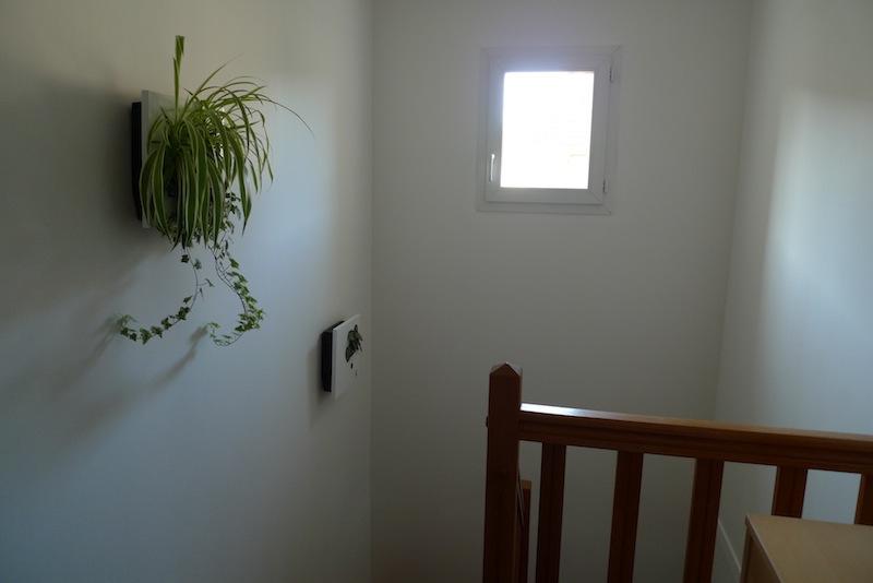 Déco cage d'escalier - Page 2 P1010011
