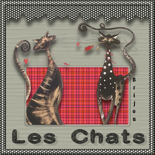 CoursPSP-32-Les chats Image213