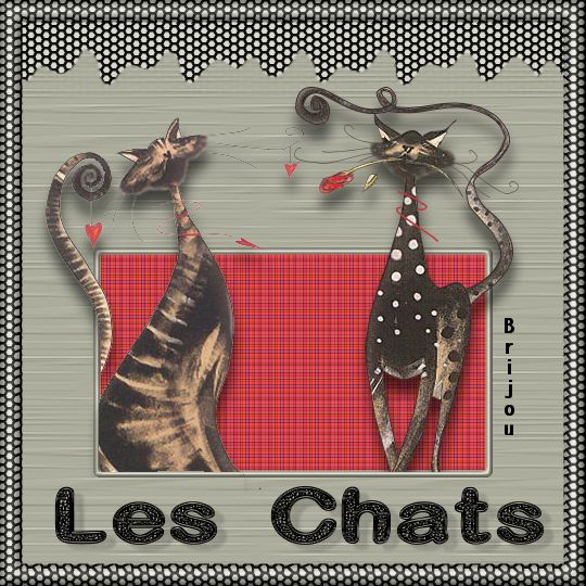 CoursPSP-32-Les chats Image711