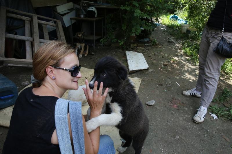 Yoko, petite puce de 3 mois, bébé très sociable - Adoptée Hx9a1416