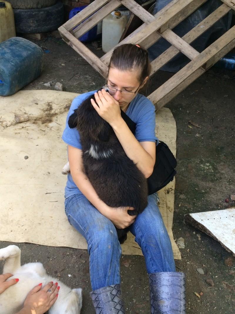 Yoko, petite puce de 3 mois, bébé très sociable - Adoptée Photo_32
