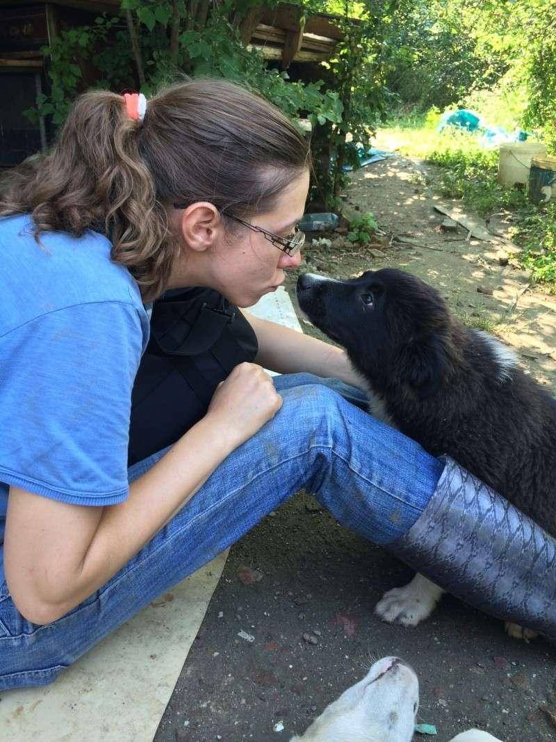Yoko, petite puce de 3 mois, bébé très sociable - Adoptée Photo_34