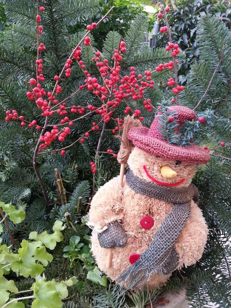 Joyeuses Fêtes Noel2010