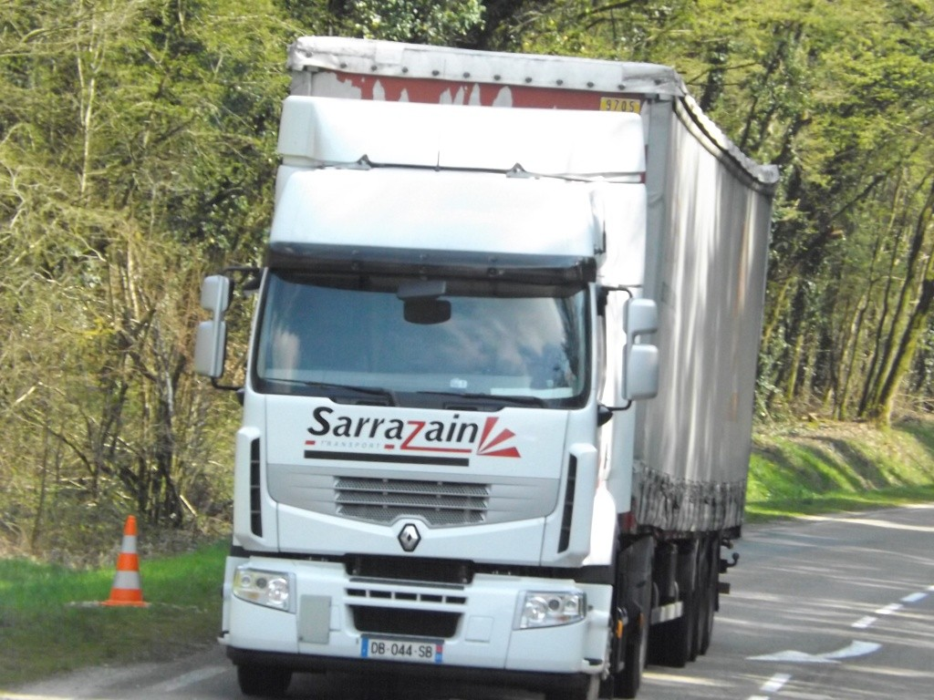 Sarrazain (Toulouse, 31) Dscf3765