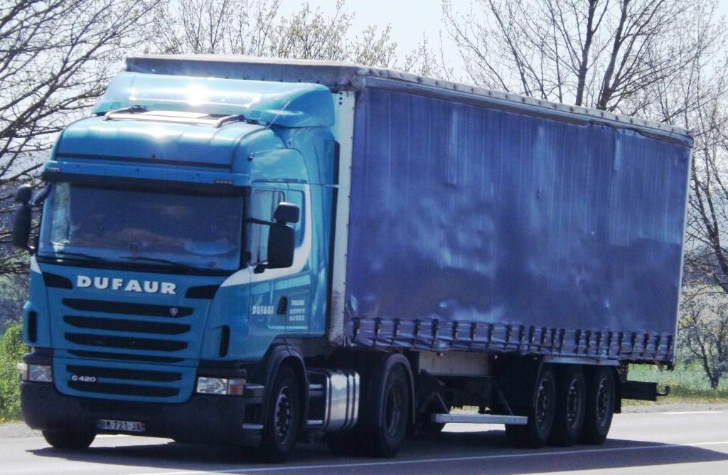 Dufaur (Toulouse 31) Dscf4220