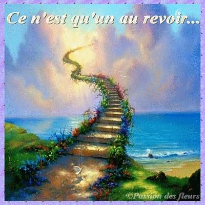 Adieu ma douce SENSATION Mod_ar10