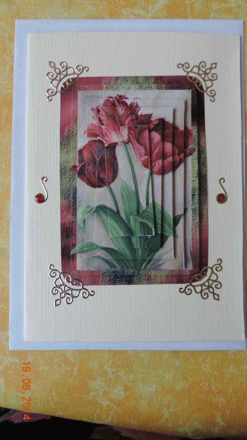 Karten gemacht 19_06_15
