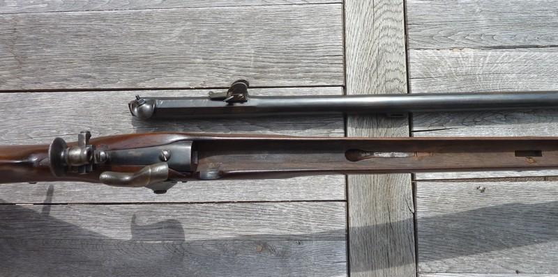 Ma Carabine Fédérale Suisse 1851 Cf610