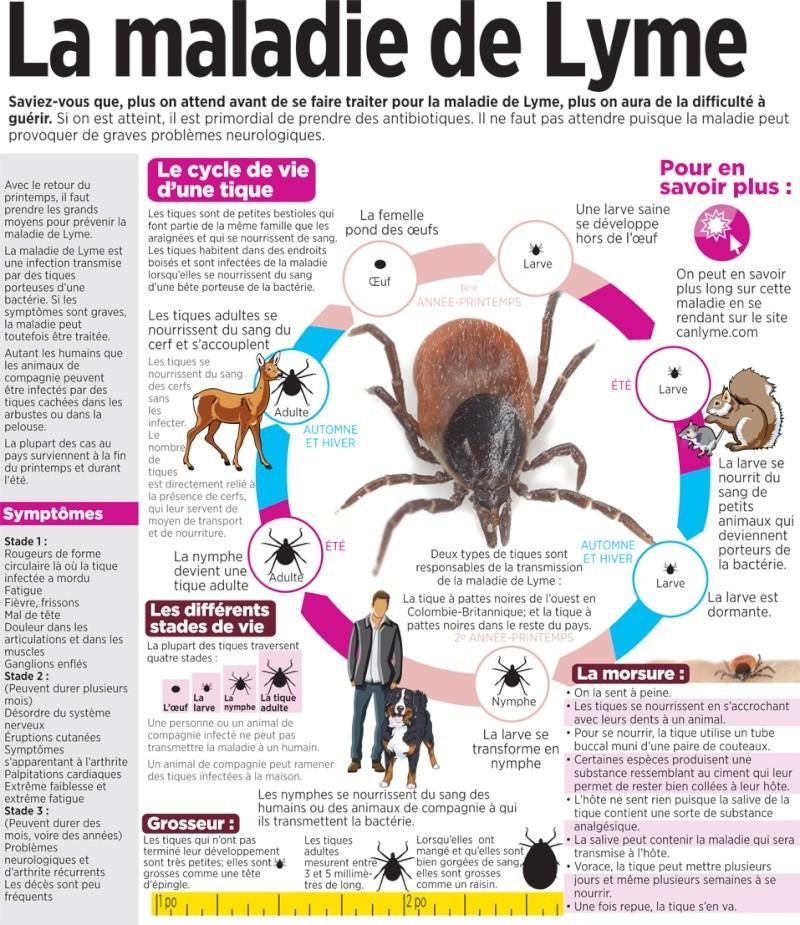 La maladie de Lyme ... 13108211