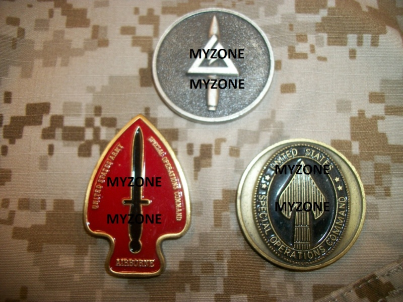 Myzone's thread of challenge coins - OEF OIF -  100_7327