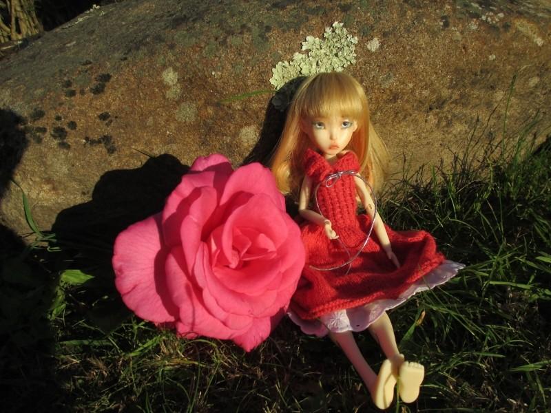 les vacances de mes LD, Kish, Boneka et Millie  Img_0125
