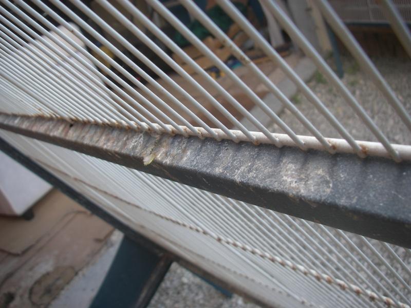 Retapage de volière : peinture et aménagement. Imgp0012