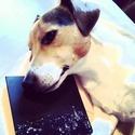 Instagram Nicola Sirkis - Page 2 Instag70
