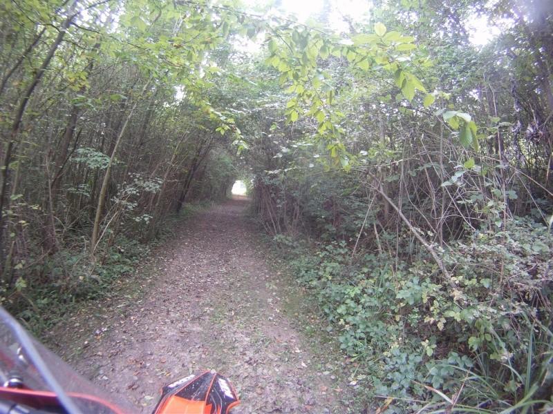 Randonnée trail ile de france et picardie le 11 octobre Gopr4210