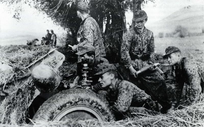 L'influence du camouflage allemand ww2, de nos jours. - Page 5 194410