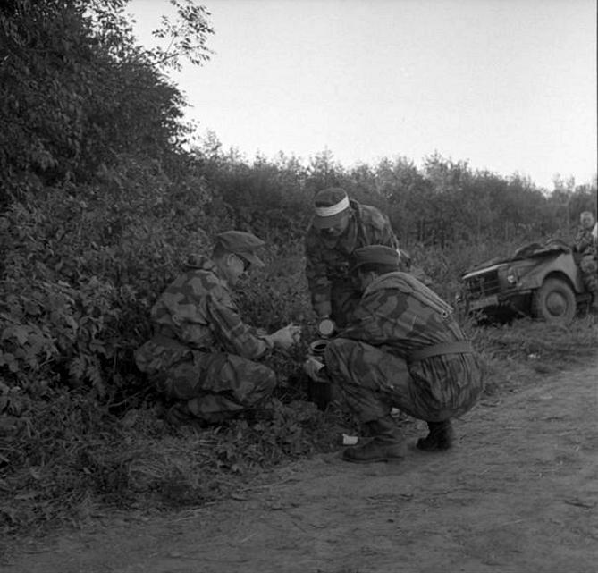 L'influence du camouflage allemand ww2, de nos jours. 195810