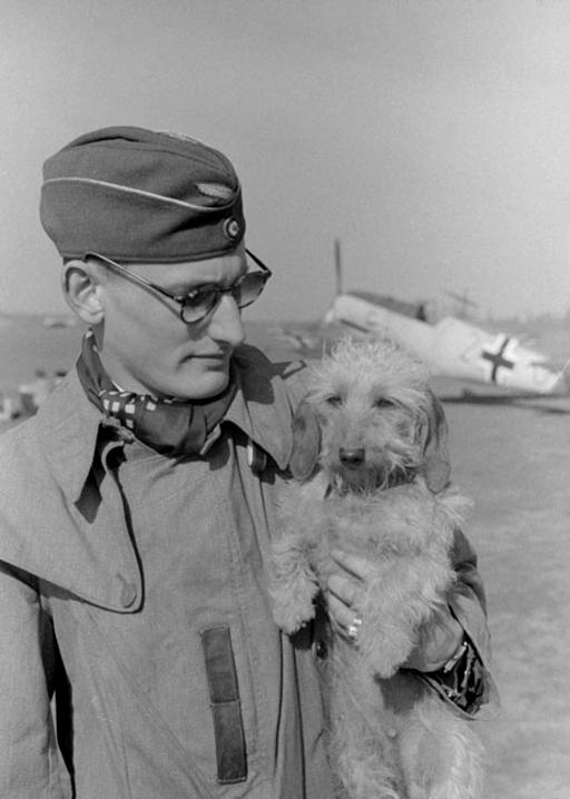 Les Calots de la Luftwaffe 91310